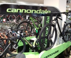 Cannondale Point 2019